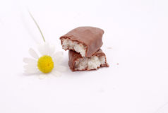 Chamomile herb and candy bar with coconut Royalty Free Stock Photography