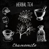 Chamomile herbal tea. Chalk board set of  elements Royalty Free Stock Photography