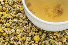 Chamomile herbal tea Royalty Free Stock Photos