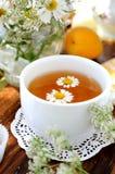 chamomile herbata Obrazy Stock