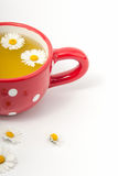 Chamomile herbata w filiżance zdjęcia royalty free