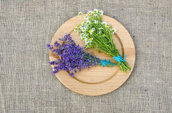 Chamomile and hyssop on wooden plate. Bunches of chamomile and hyssop on wooden plate with cotton material covering table surface stock photography