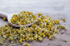 Chamomile In Wooden Spoon Stock Photos