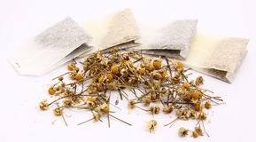 Chamomile infusion Stock Images