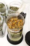 Chamomile infusion of chamomile Royalty Free Stock Photography