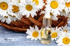 Chamomile istotny olej w szklanej butelki stojakach na drewnianych deskach blisko kosza z chamomile kwitnie fotografia stock