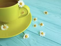 Chamomile kwiat, filiżanka ranku napoju herbata na błękitnym drewnianym tle świeżość fotografia stock