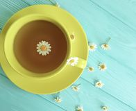 Chamomile kwiat, filiżanki herbata na błękitnym drewnianym tle świeżość fotografia royalty free
