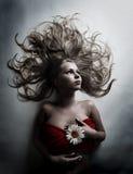chamomile kwiatu biała kobieta Obraz Stock