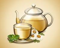 Chamomile kwiatu herbata ilustracji