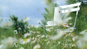 Among the chamomile lawn, against the blue sky is a white chair. On it a composition from a white jug, a white cup with stock footage