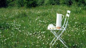 Among the chamomile lawn stands a white chair. On it there is a composition of a white jug, a white cup with tea, a stock footage