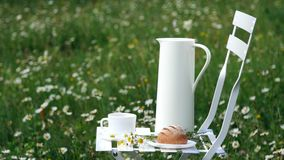 Among the chamomile lawn stands a white chair. On it there is a composition of a white jug, a white cup with tea, a stock video footage