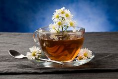 Chamomile with Marguerite Stock Image