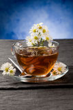 Chamomile with Marguerite Stock Photography