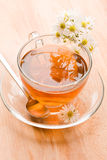 Chamomile with Marguerite Stock Photos