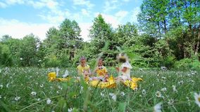 On a chamomile meadow, there are three children , they drink sweet drinks. They have a picnic, they have fun, they are stock video