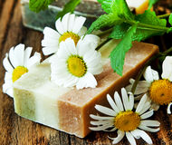 Chamomile and Mint Soap Royalty Free Stock Photography