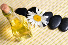 Chamomile, oil and stones Stock Images