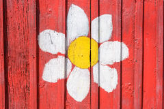 Chamomile painted on red wooden fence close up. Close up of bright flower painted on red wooden surface Stock Photography