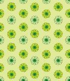Chamomile pattern Stock Photo