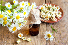 Chamomile products Stock Images
