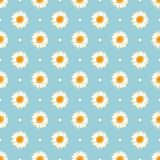Chamomile seamless pattern. Daisies on blue polka dot background. Chamomile seamless pattern. Daisies on retro blue polka dot background. Vector illustration Stock Photo