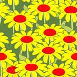 Chamomile seamless pattern. Yellow flowers ornament.  Royalty Free Stock Photography
