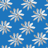 Chamomile seamless texture Stock Image