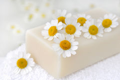 Chamomile soap and flowers stock photography