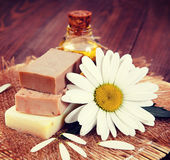 Chamomile and soap. Vintage retro hipster style version Royalty Free Stock Photo