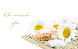 Chamomile spa stock image