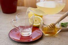 Chamomile-Tarragon infusion tea set. Preparation of Chamomile-Tarragon infusion receipt stock image