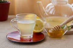Chamomile-Tarragon infusion tea set Stock Photography