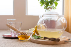 Chamomile-Tarragon infusion tea set. Preparation of Chamomile-Tarragon infusion receipt royalty free stock photo