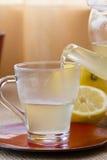 Chamomile-Tarragon infusion tea set Stock Photo