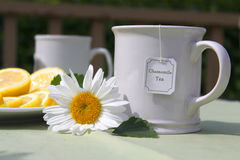 Chamomile tea. A cup of tea with lemon and yellow daisy flowers Royalty Free Stock Photography