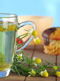 Chamomile Tea Stock Image