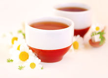 Chamomile tea Stock Photos