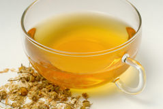 Chamomile tea Royalty Free Stock Image