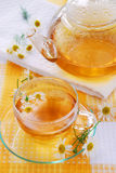 Chamomile tea Royalty Free Stock Photos