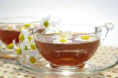 Chamomile and tea stock image