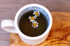 Chamomile tea with chamomile daisy flowers Royalty Free Stock Photography