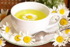 Chamomile Tea Closeup Royalty Free Stock Images