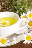 Chamomile Tea Closeup Royalty Free Stock Photography