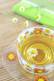 Chamomile tea cup royalty free stock images
