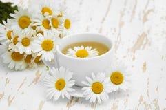 Chamomile tea Royalty Free Stock Image