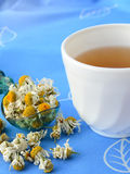 Chamomile tea with dried chamomile flowers. On blue background Stock Images