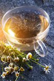 Chamomile tea and flowers Stock Photo