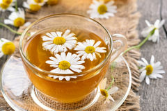 Chamomile tea in glass cup Stock Photos